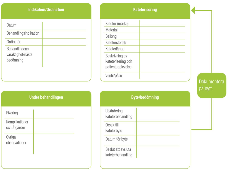 bactiguard-dokumentering-process-och-risker-urinvagskateterisering-kad-sv-1920p